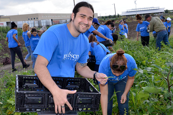 Nielsen employees volunteering in a community garden
