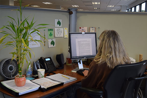 An interior view of the Nielsen office in San Diego with employees solving problems